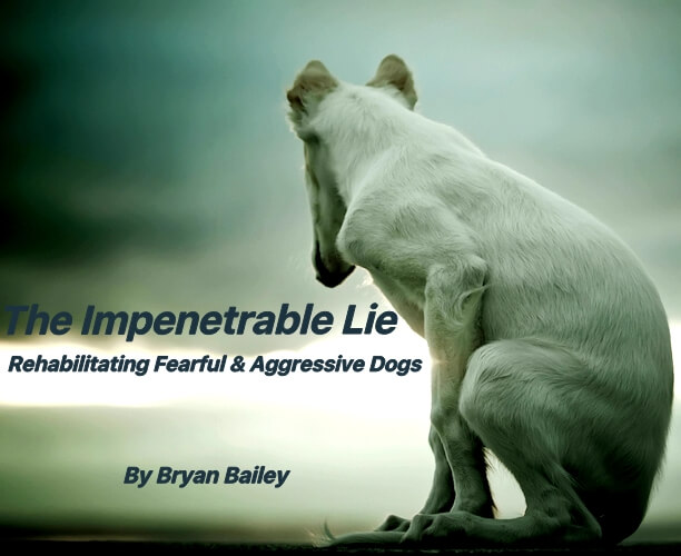 "This is an image of the book ""The Impenetrable Lie"" by Bryan Bailey"