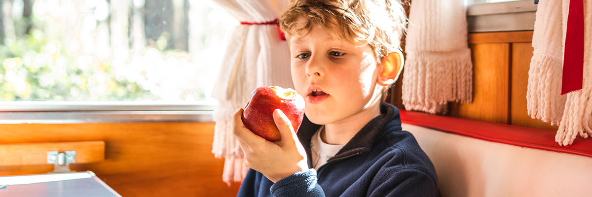 Boy holding and looking at an apple