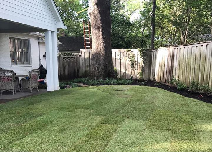 Memphis landscaping ideas