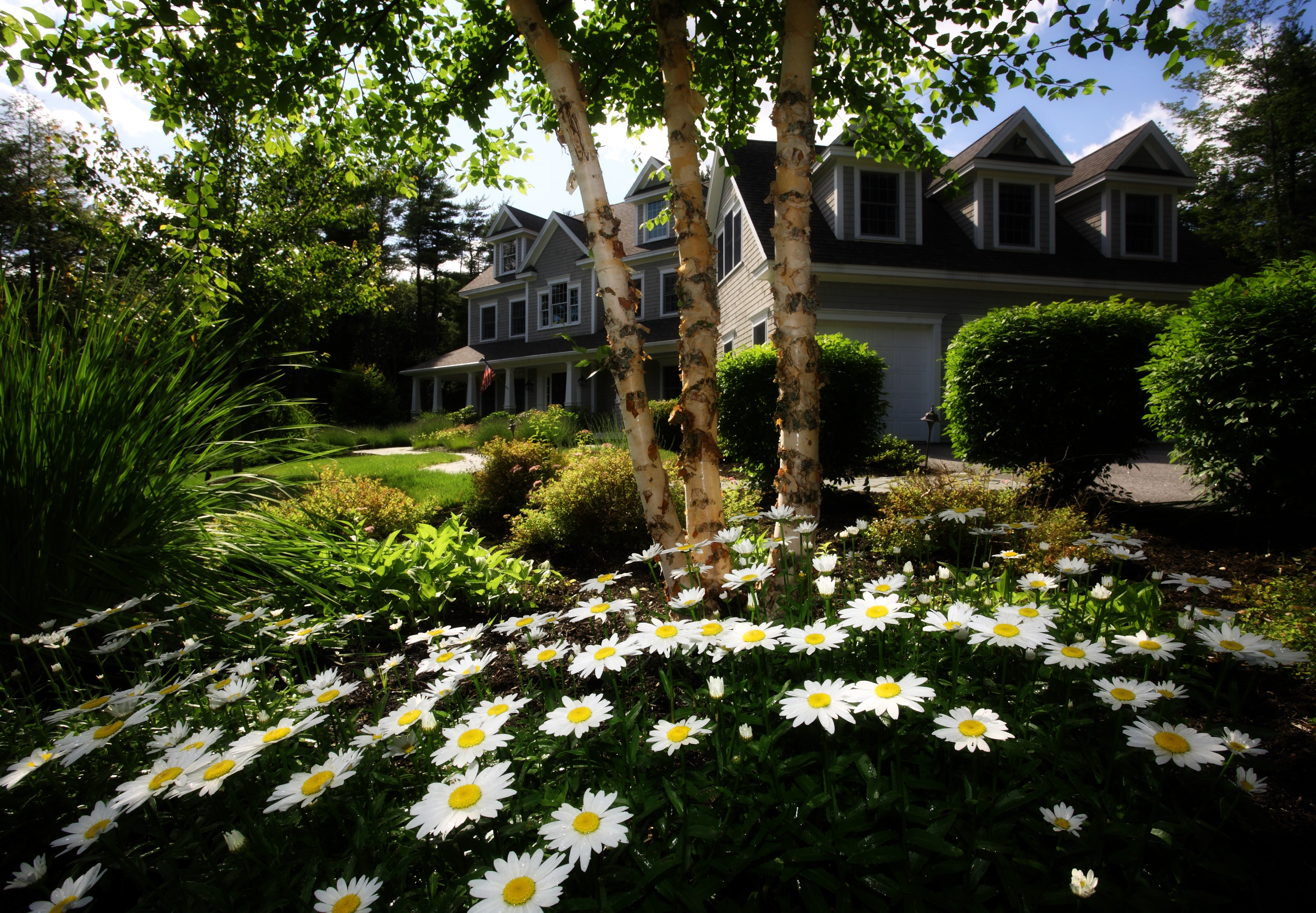 House with Flowers and Landscaping