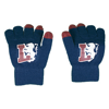 Lyon Texting Gloves