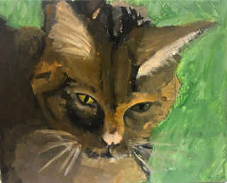 Humane Rescue Alliance Animal and Art Camp