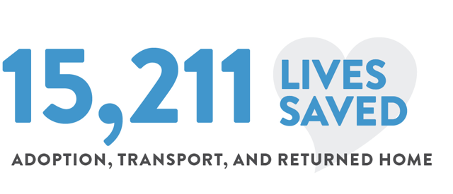 15,211 lives saved