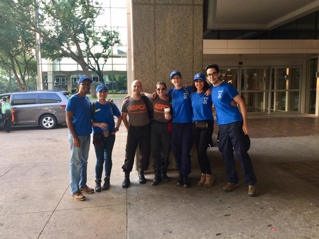 HRA team works with ASPCA at emergency shelter in Dallas