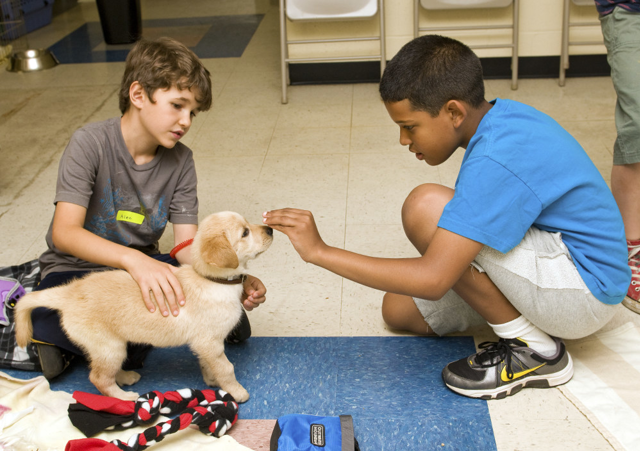 Humane Rescue Alliance Humane Education Campers