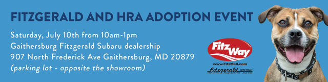 Fitzgerald and HRA adoption event July 10, 2021