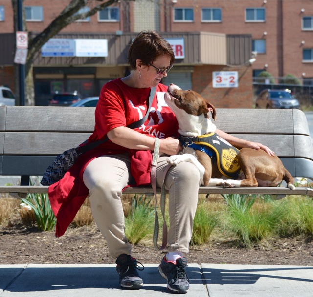 HRA volunteer with dog at adoption event