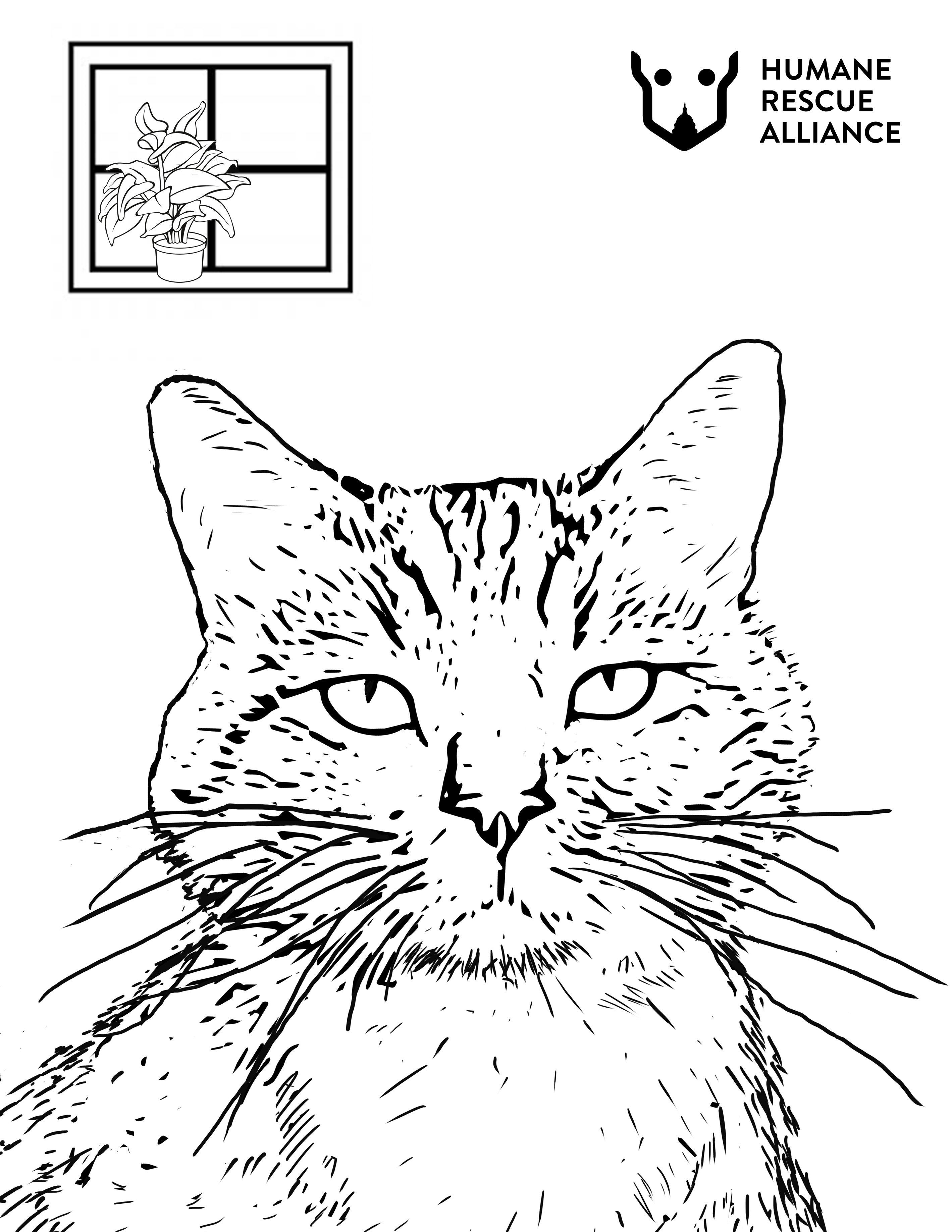 Cat Coloring Page by Christina Gephardt