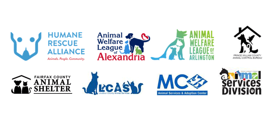 banner image for  DMV Area Animal Shelters Urge Community Members to Have a Plan in Place for Their Pets
