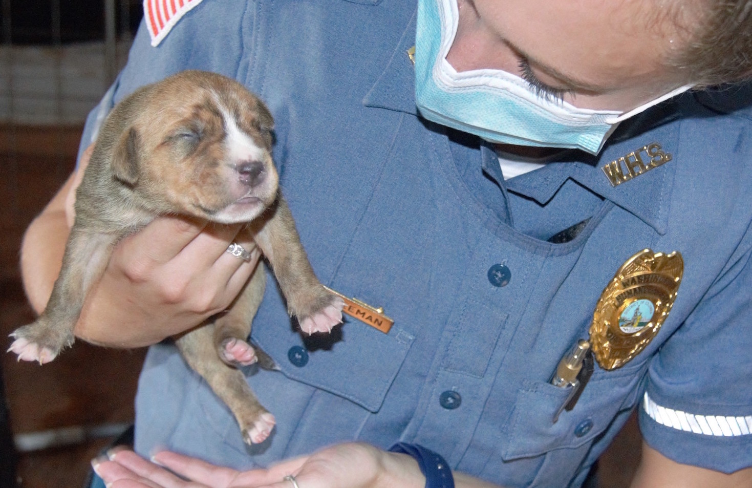 Our teams are available day or night to help. For animal related emergencies call 202-723-5730.  icon