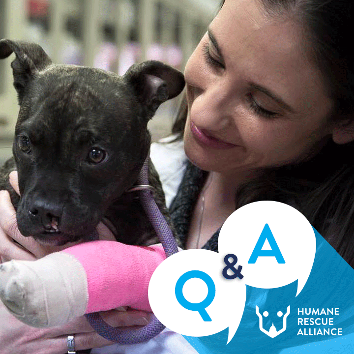 Join LIVE or on demand for a community conversation on how to keep your pets and family safe based on the latest information and guidance. icon