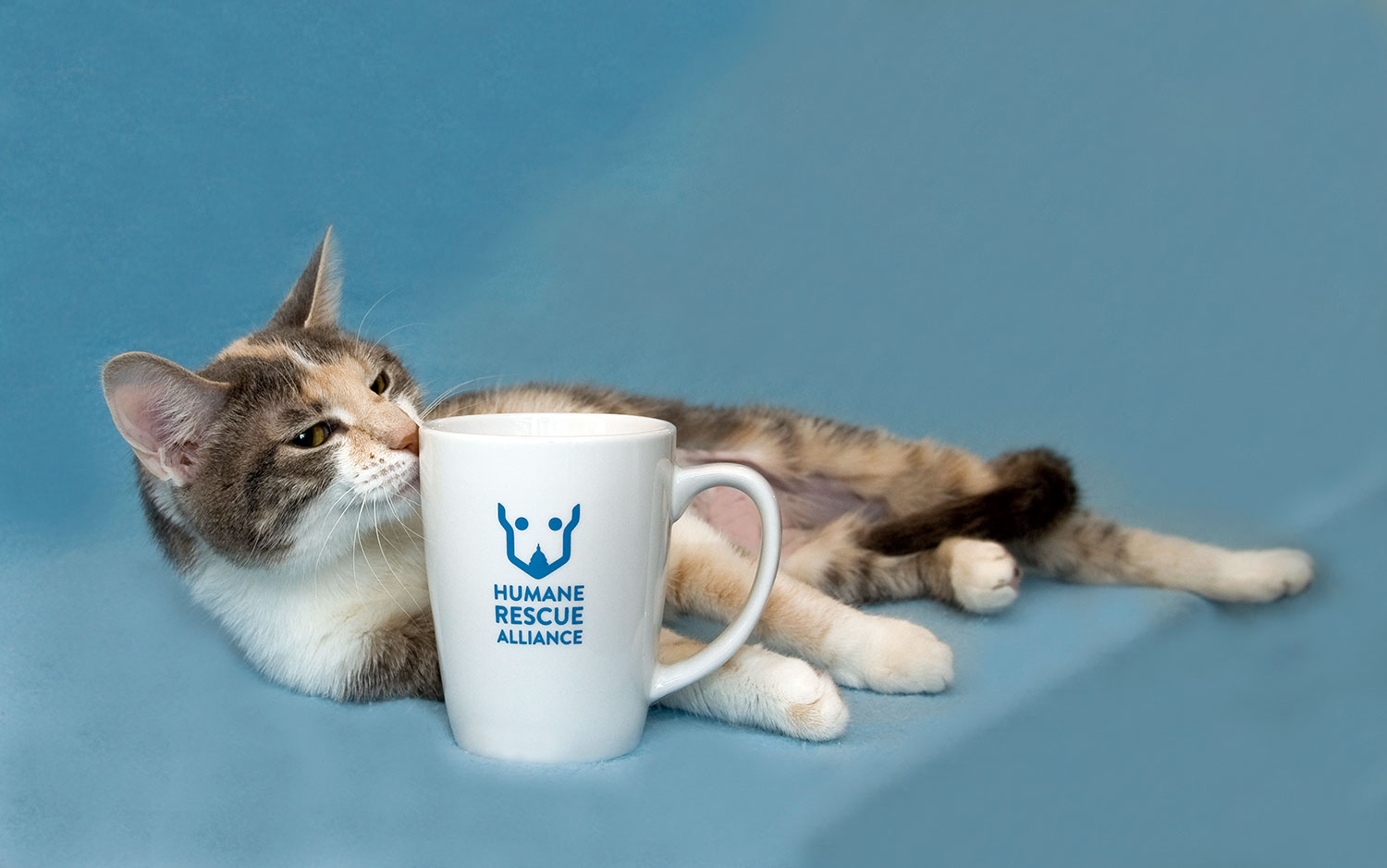 Humane Rescue Alliance Store: Dogs Cats Sports Book