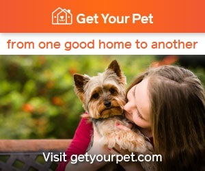 Get Your Pet – Pet Rehoming
