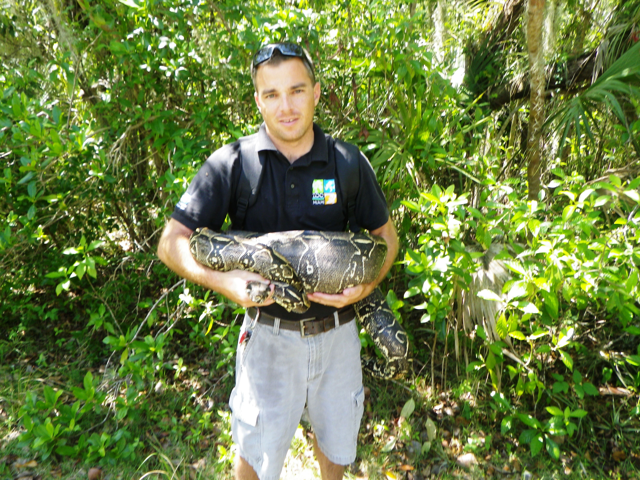 Dustin Smith of Zoo Miami holding a large female boa constrictor in the Zoo Miami study