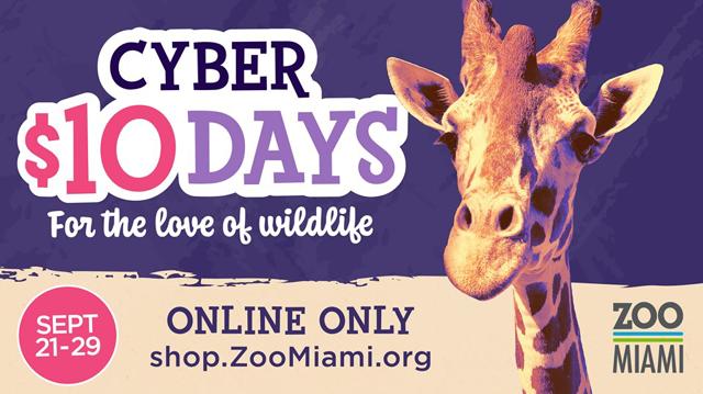 Home | Zoo Miami