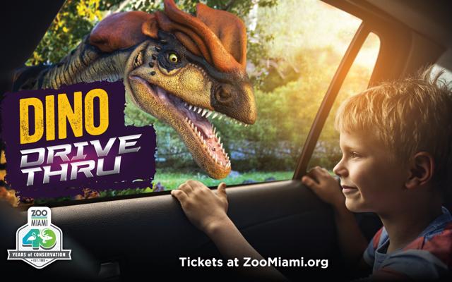 Dino Drive Thru child looking a dinosaur from car window