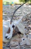 2015 annual ZMF report