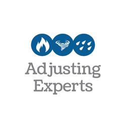 Adjusting Experts Logo