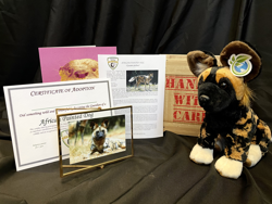 Painted dog package
