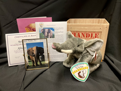 animal adoption package
