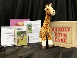 Giraffe adoption package