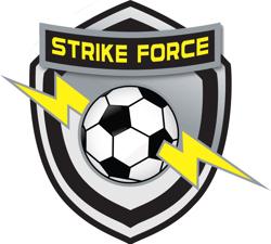 Miami Strike Force Logo
