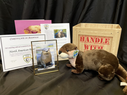 Otter adoption package