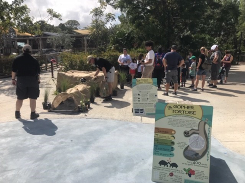 Gopher Tortoise Day event at Zoo Miami