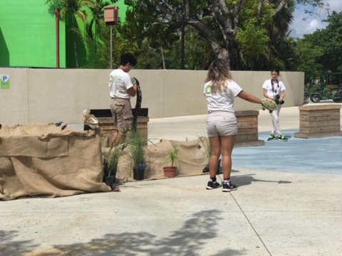 demonstration about Gopher Tortoise at Zoo Miami