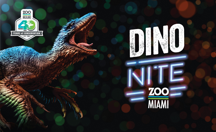 Featured Event Image for Dino NITE!