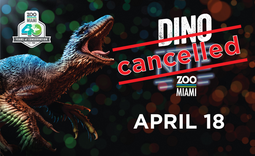 Dino NITE! - CANCELLED image