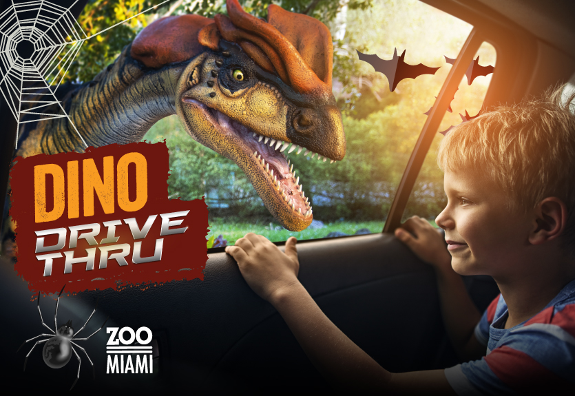 Featured Event Image for Dino Drive-Thru - Halloween Edition