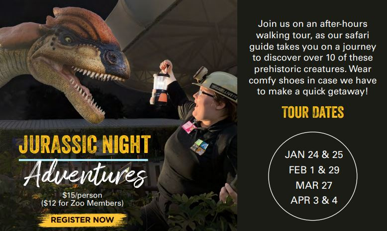Jurassic Night Adventures image