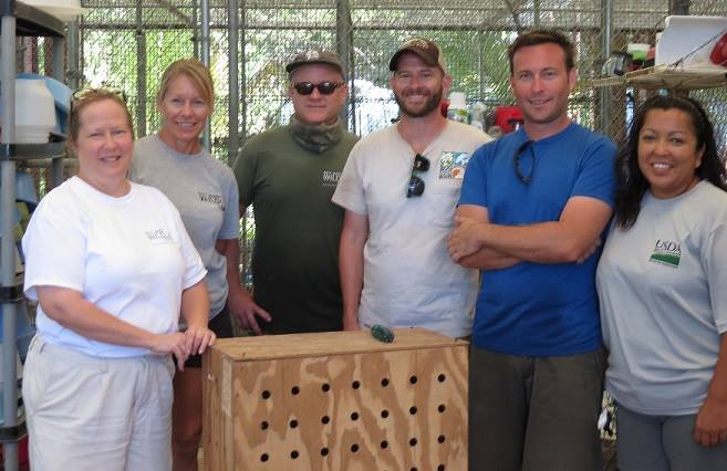 An image of Concy's capture and rescue crew and the crate that Conchy was put in after safely being transported.