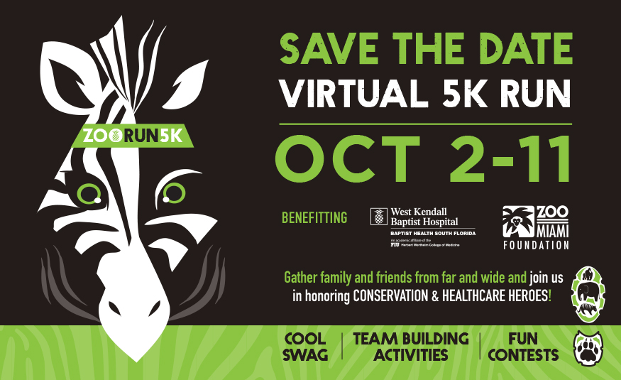 Featured Event Image for Virtual ZooRun5K