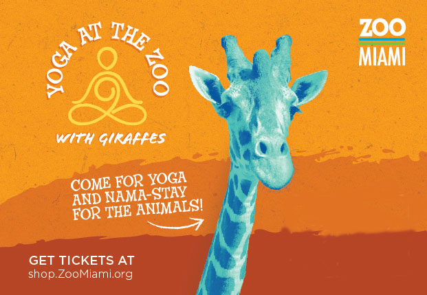 Featured Event Image for Yoga at the Zoo with Giraffes