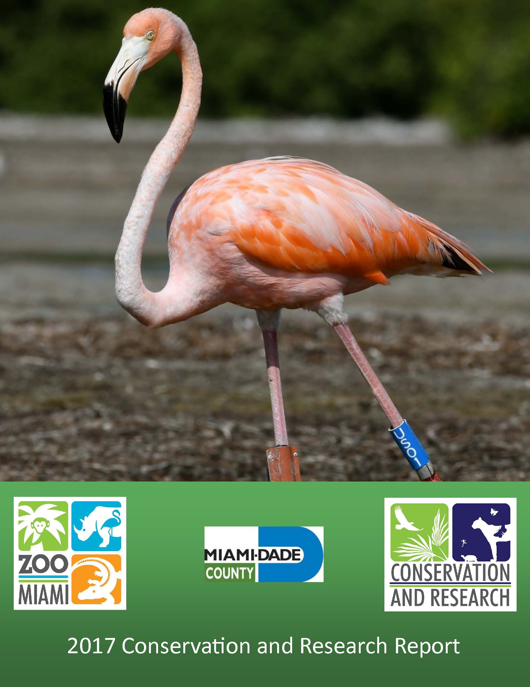 2017 Zoo Miami Conservation and Research Annual Report