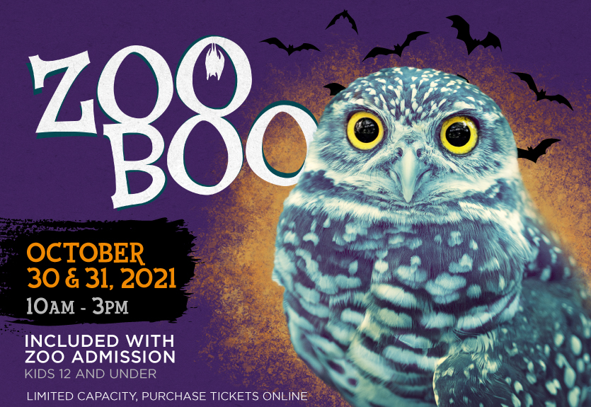 Featured Event Image for Zoo Boo 2021