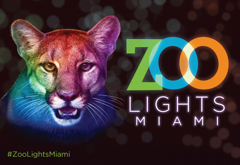 Featured Event Image for Zoo Lights Miami - Select Nights