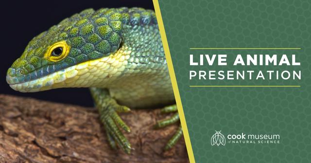 Live Animal Presentation