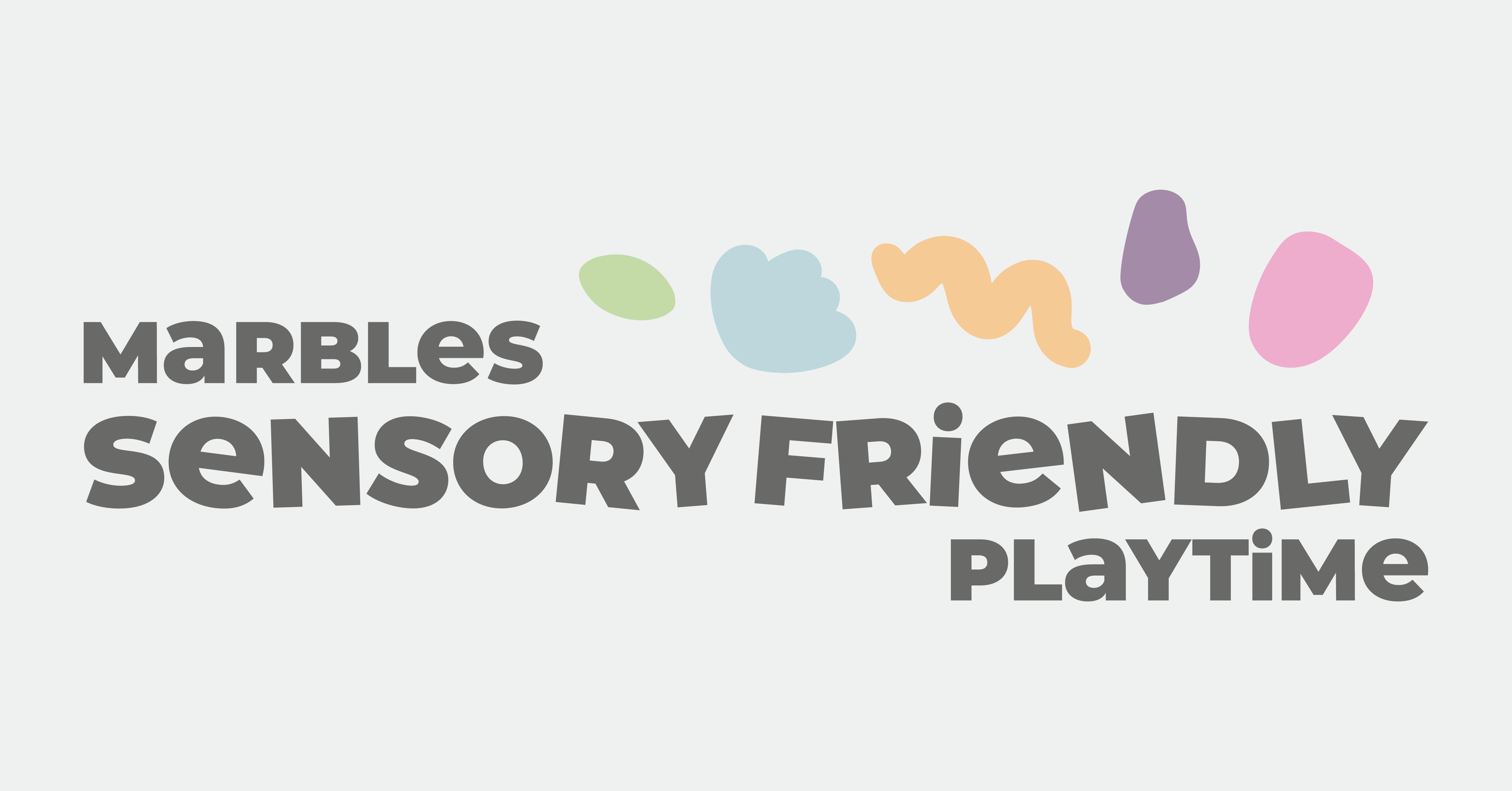 Sensory Friendly Playtime