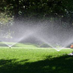 Irrigation Installation & Design