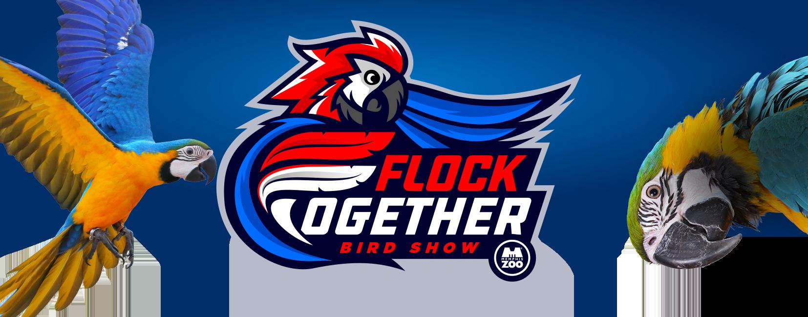 Bird show logo