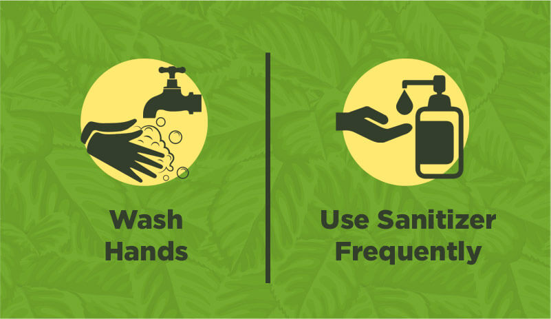 Wash hands and use sanitizer frequently