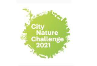 Virtual Program: Citizen Science - City Nature Challenge
