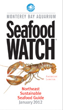 seafood watch guide copy