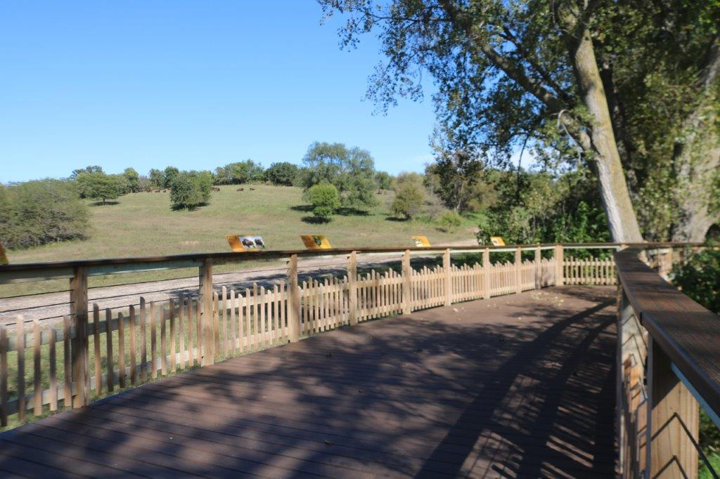 Bison Overlook and Nature Play Area Now Open