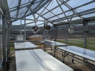 Interior photo of Glab Family Greenhouse