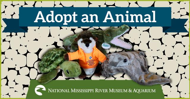 Adopt an Animal Program