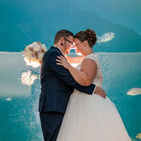 Wedding by the Gulf of Mexico Aquarium